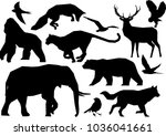 wildlife silhouette in polygon... | Shutterstock .eps vector #1036041661