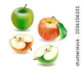 vector realistic  illustration... | Shutterstock .eps vector #1036106101
