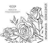 graphic flower art illustration.... | Shutterstock .eps vector #1036113415