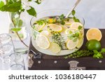 fresh lemon  lime  thyme and... | Shutterstock . vector #1036180447