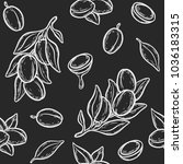 seamless pattern of argan... | Shutterstock .eps vector #1036183315