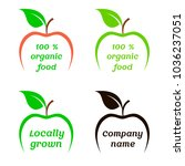 green apple   stock vector....