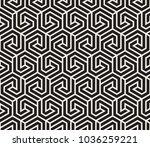 vector seamless pattern. modern ... | Shutterstock .eps vector #1036259221