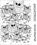 coloring book for adult and... | Shutterstock .eps vector #1036269349