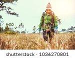 asian women travel  nature.... | Shutterstock . vector #1036270801