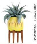 3d illustration agave | Shutterstock . vector #1036274884