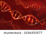 dna molecule. genetic... | Shutterstock . vector #1036353577