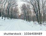 winter road in forest. | Shutterstock . vector #1036408489