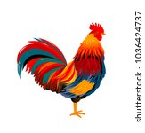 colorful beautiful cock on a... | Shutterstock .eps vector #1036424737
