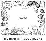 berry fruit  illustration frame ...   Shutterstock .eps vector #1036482841