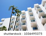the palm tree and building of... | Shutterstock . vector #1036495375