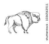 doodle art illustration of an... | Shutterstock .eps vector #1036563511