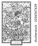 Zodiac Sign Scorpio Or Scorpio...