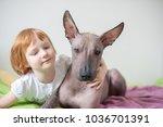 a girl hugs her mexican... | Shutterstock . vector #1036701391