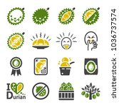 durian icon set | Shutterstock .eps vector #1036737574