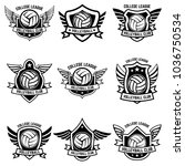 volleyball emblems on white... | Shutterstock .eps vector #1036750534