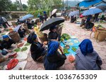 lao cai  vietnam   sep 7  2017  ... | Shutterstock . vector #1036765309