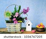 macaroon and flowers   Shutterstock . vector #1036767205