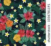 floral seamless pattern.... | Shutterstock .eps vector #1036781191
