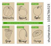 fruit packaging design template ... | Shutterstock .eps vector #1036786525