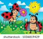 happy ladybugs on meadow image... | Shutterstock .eps vector #1036819429