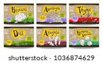 set colorful food labels ... | Shutterstock .eps vector #1036874629