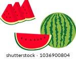 pieces of watermelon vector   Shutterstock .eps vector #1036900804