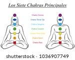 seven main chakras with spanish ... | Shutterstock .eps vector #1036907749