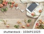 white knitting wool  dried... | Shutterstock . vector #1036911025