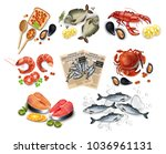sea food set collection vector... | Shutterstock .eps vector #1036961131