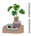 a potted monstera plant... | Shutterstock .eps vector #1036992619