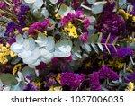bunch of purple flowers  still... | Shutterstock . vector #1037006035
