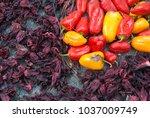detail traditional easter... | Shutterstock . vector #1037009749