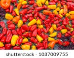 detail traditional easter... | Shutterstock . vector #1037009755