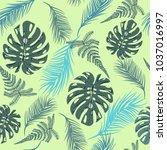 vector background tropical... | Shutterstock .eps vector #1037016997