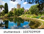 wells cathedral and bishop's... | Shutterstock . vector #1037029939