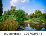 wells cathedral and bishop's... | Shutterstock . vector #1037029945