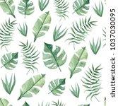 green summer tropical... | Shutterstock . vector #1037030095