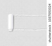 torn paper edge transparent... | Shutterstock .eps vector #1037053324