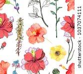 watercolour flowers. seamless... | Shutterstock . vector #1037074111