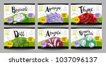 set colorful food labels ... | Shutterstock .eps vector #1037096137