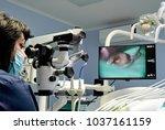 the dentist works on a dental... | Shutterstock . vector #1037161159