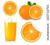 orange fruit set  isolated on... | Shutterstock .eps vector #103716701