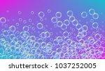 bath foam on gradient... | Shutterstock .eps vector #1037252005
