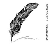 feather with ink. | Shutterstock .eps vector #1037325601