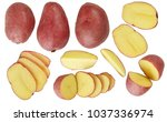 a set of potatoes. useful... | Shutterstock . vector #1037336974
