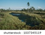 beautiful small blue lake with...   Shutterstock . vector #1037345119