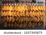 palma de mallorca  spain.... | Shutterstock . vector #1037345875