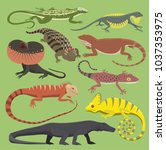 reptyle vector lizard reptile... | Shutterstock .eps vector #1037353975