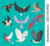 fllying birds vector cartoon... | Shutterstock .eps vector #1037353981